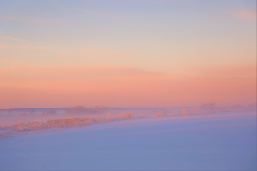 Dreamy Cold Foggy Morning by lynnz