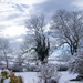 Snow, Snow Snow Snow by barrgun