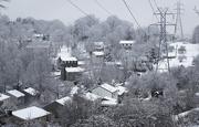 23rd Jan 2021 - Snow 6