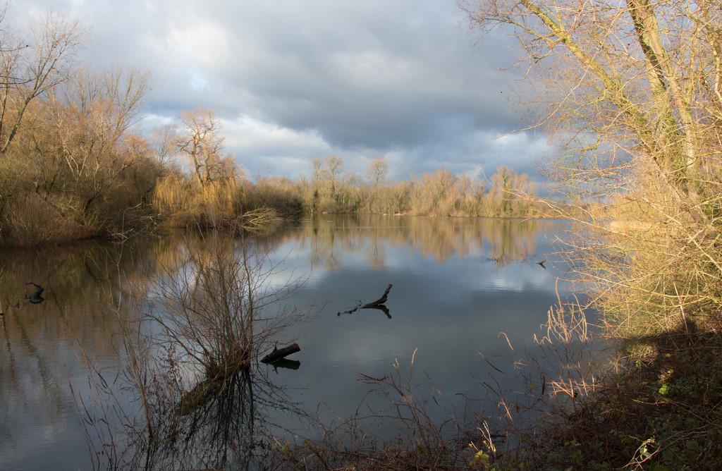 Paxton Lake by busylady