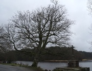 18th Jan 2021 - Another aspect of Paimpont Lake
