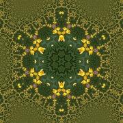 19th Jan 2021 - Daffodil kaleidoscope