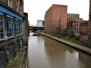 18th Jan 2021 - Brown Canal