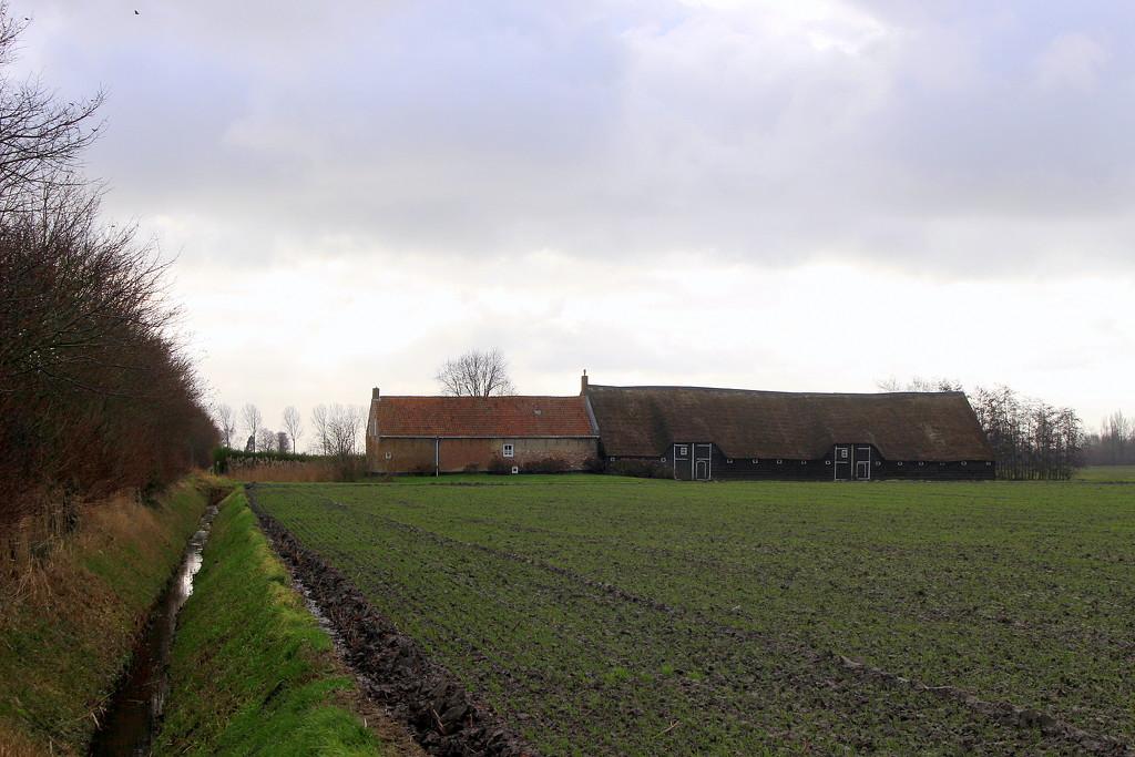 Farmhouse and barn. by pyrrhula