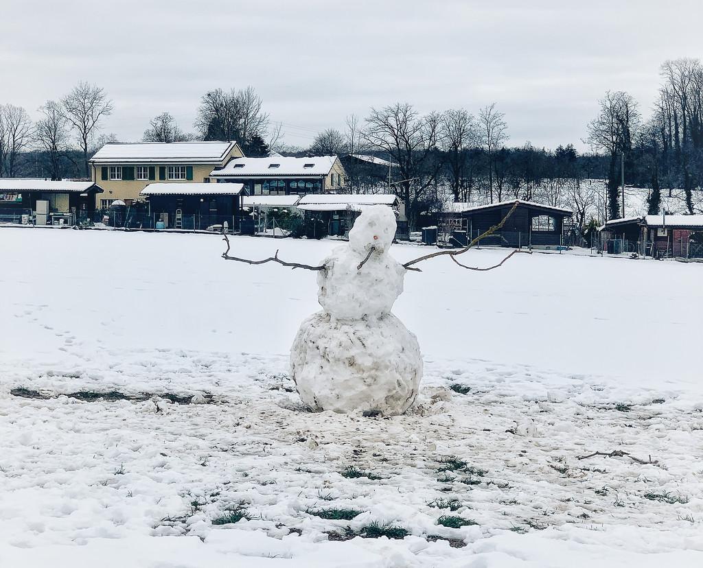 Mister snowman.  by cocobella
