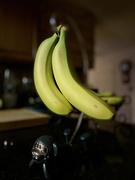 23rd Jan 2021 - That's Bananas