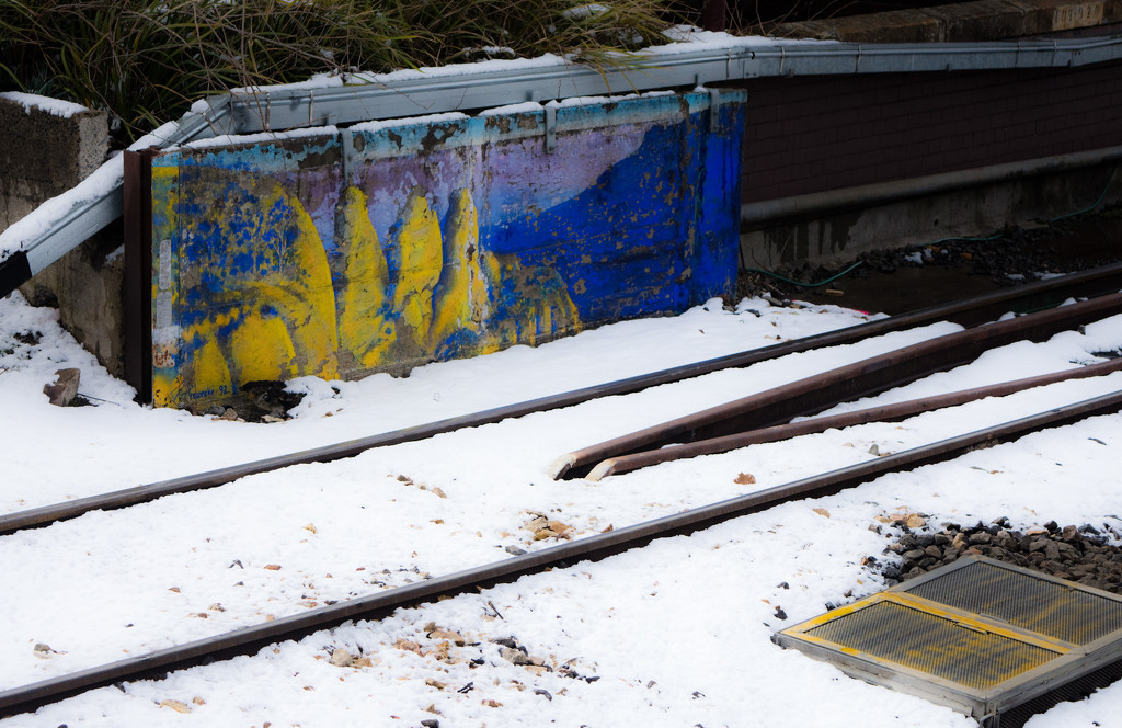 Katoomba Snow 1 by annied