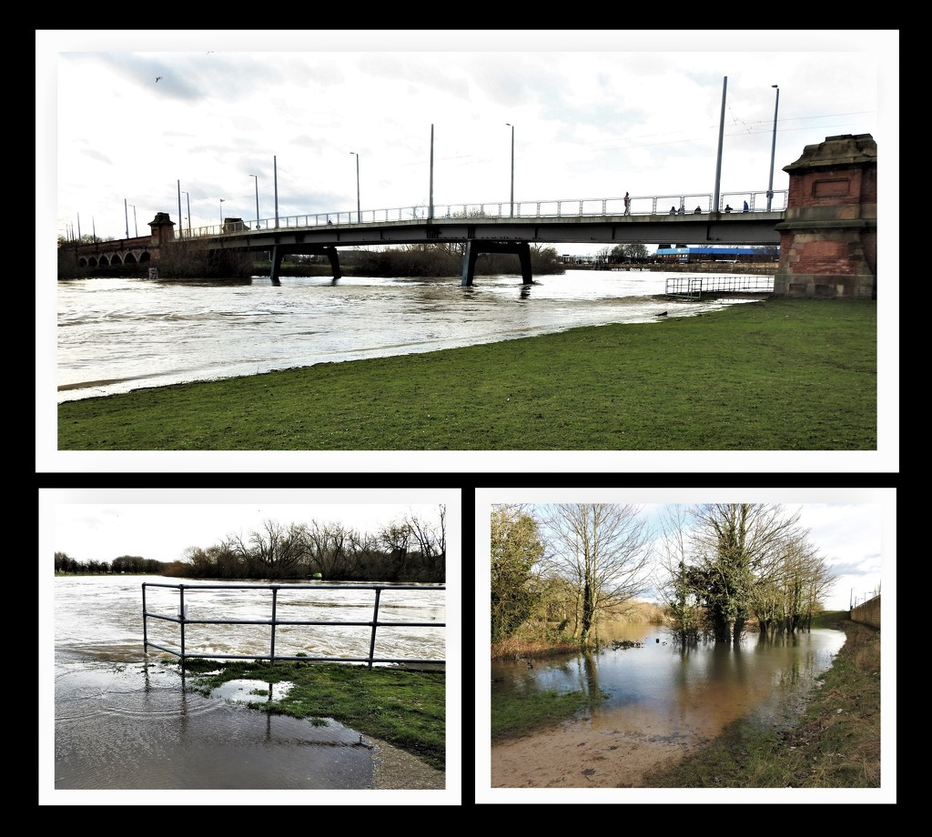 River Trent  burst it's Banks by oldjosh