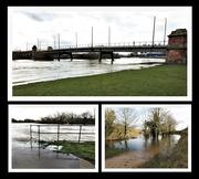 21st Jan 2021 - River Trent  burst it's Banks