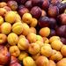 Sydney stone fruit season continues.