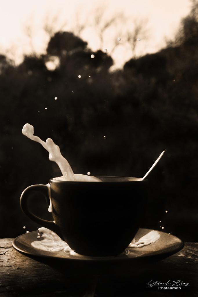 Milk drops by yolanda