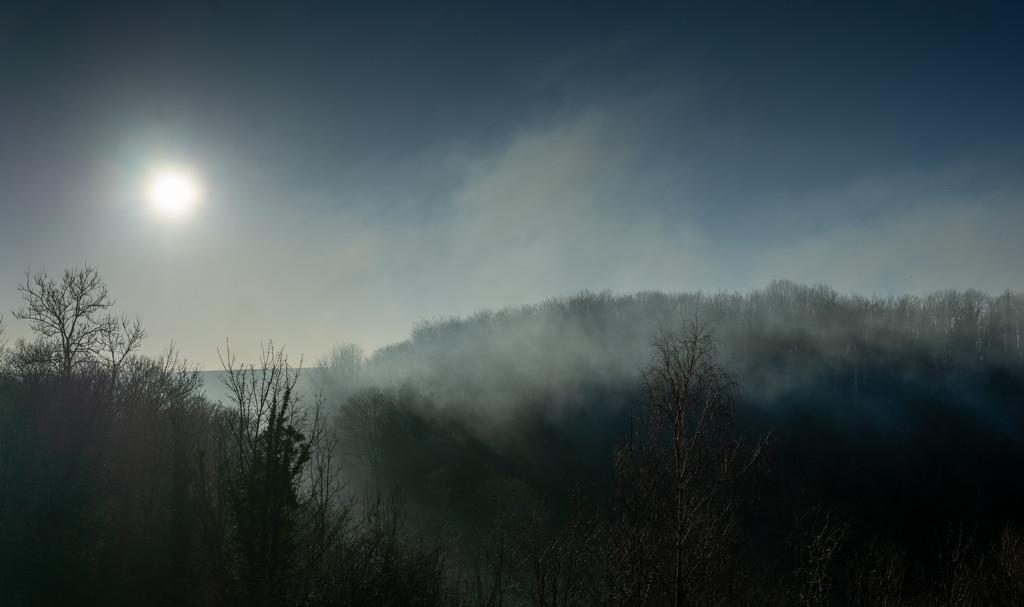 A Misty Start by pasttheirprime