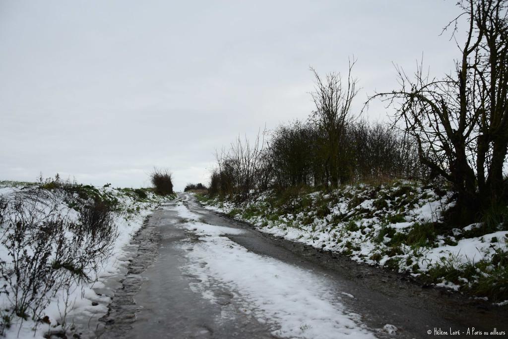 a cold walk by parisouailleurs