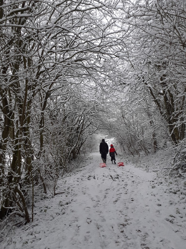 24th January - Sledging by newbank