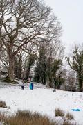 24th Jan 2021 - Snow, finally!
