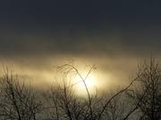 18th Jan 2021 - late light