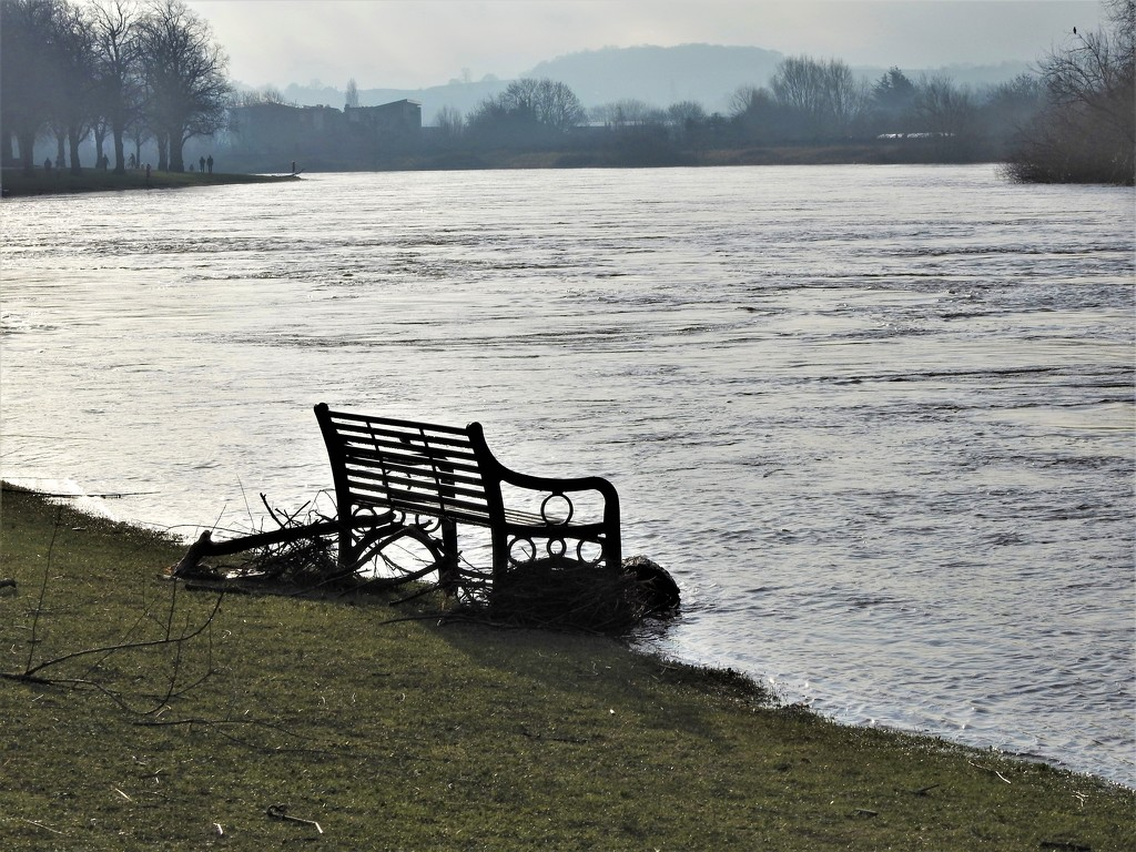 Seat by the River Trent by oldjosh