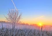 23rd Jan 2021 - Sunrise