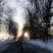 Road to Impressionism  by farmreporter