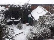 24th Jan 2021 - More snow