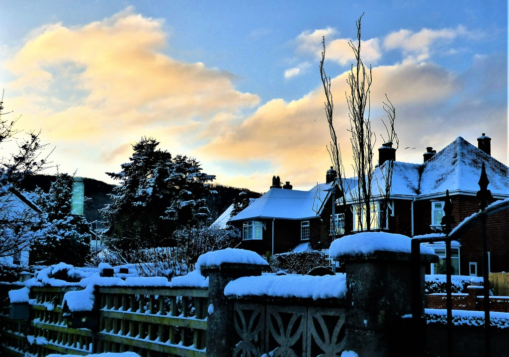 A cold and icy morning  by beryl