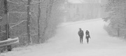 20th Jan 2021 - Snow walk