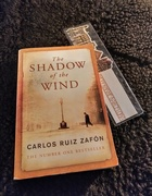 25th Jan 2021 - The Shadow of the Wind
