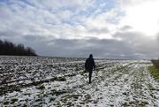 19th Jan 2021 - winter walk