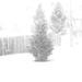 B&W falling snow