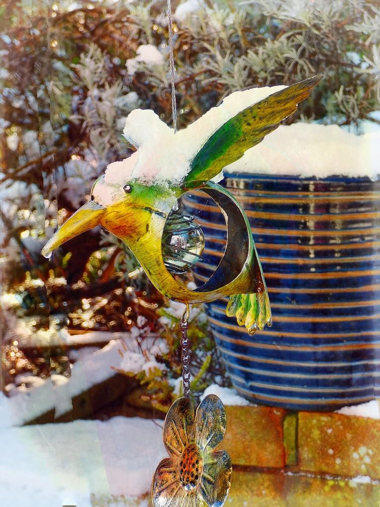 The snow bird by jaffacake