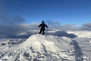 26th Jan 2021 - Blue Skies at the top