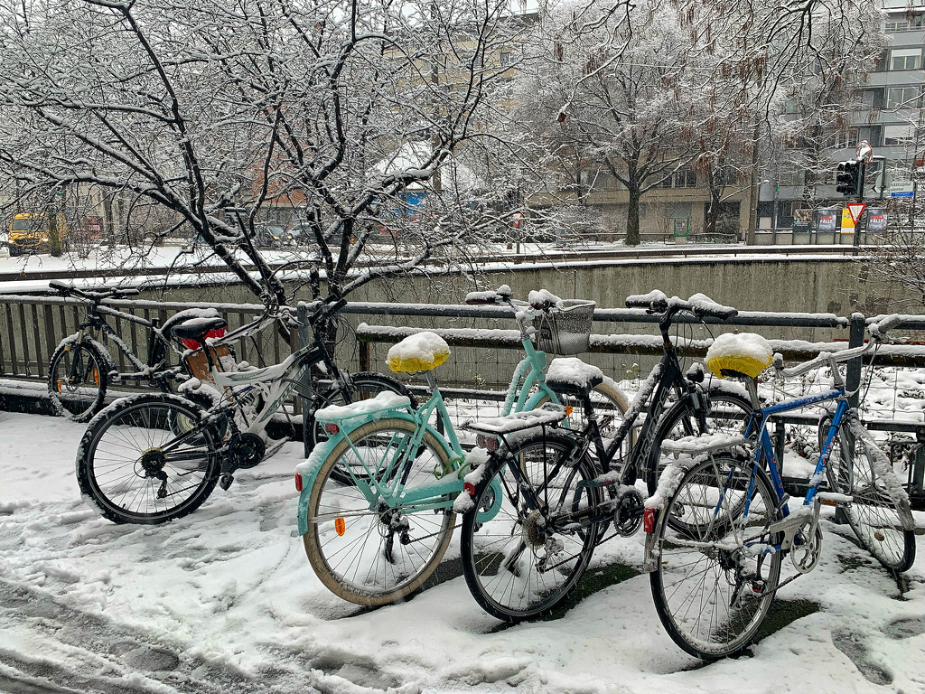 Bicycles and snow.  by cocobella