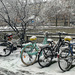 Bicycles and snow.