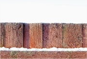 25th Jan 2021 - Frosty fence