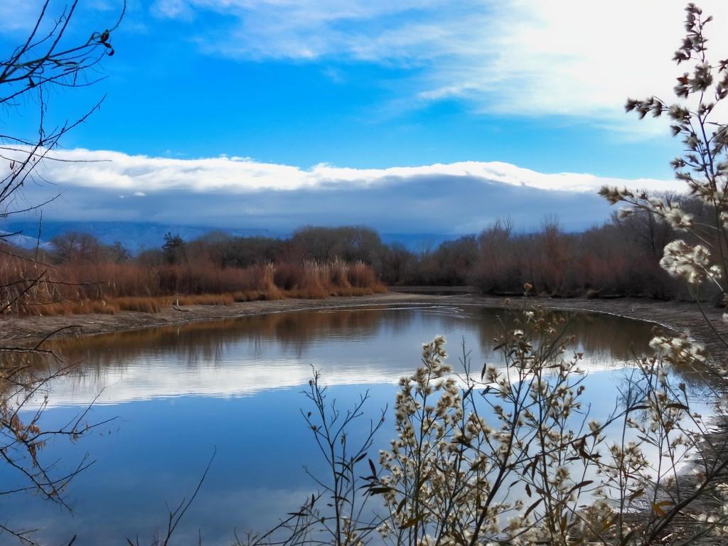 Blue Sky in Winter by janeandcharlie