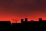 26th Jan 2021 - Roofscape