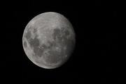 26th Jan 2021 - Moon 8.53pm