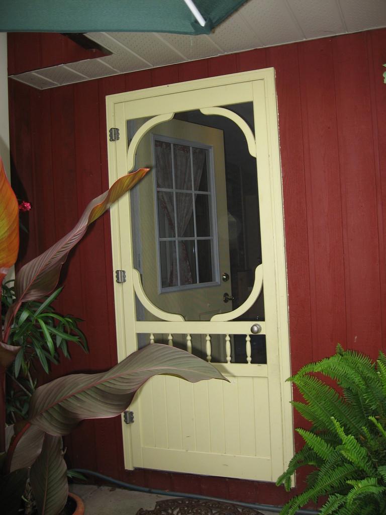Door #5: Screen Door by spanishliz