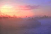 25th Jan 2021 - Sunrise Through Fog