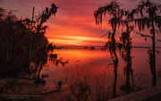 26th Jan 2021 - Tonight's Sunset, Unbelievable!