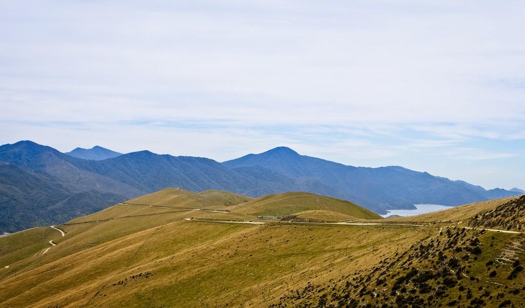The road to French Pass by kiwinanna