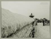 27th Jan 2021 - Snowy Wall