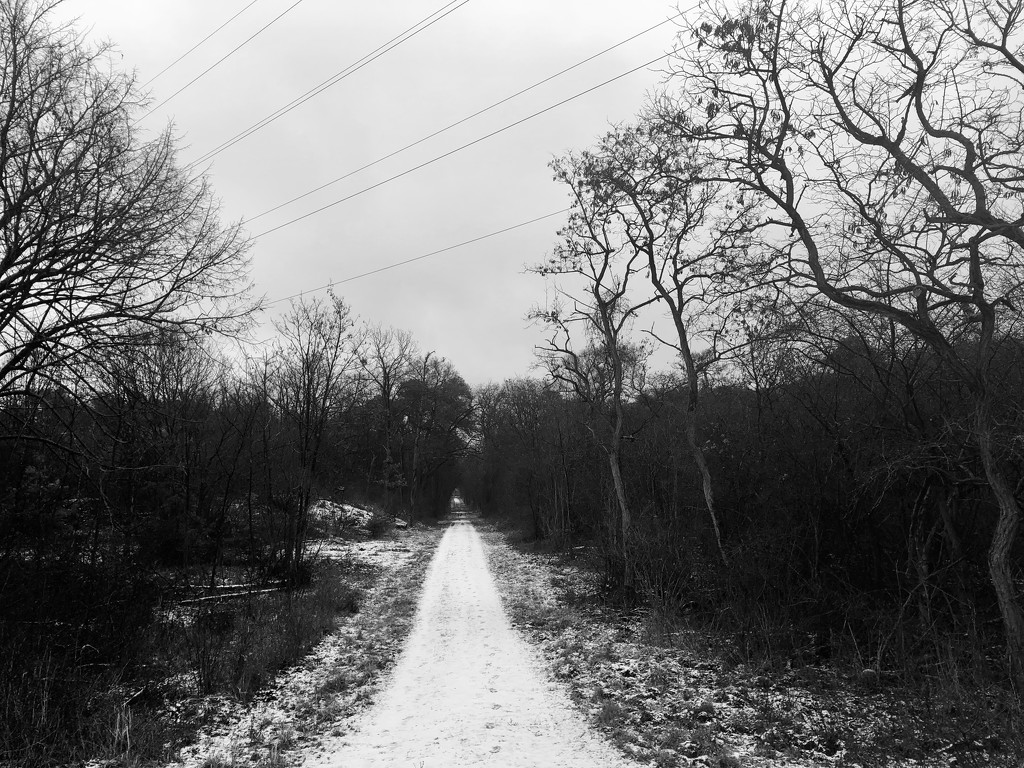 My running way by vincent24