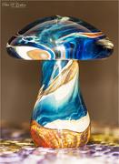 27th Jan 2021 - Glass Mushroom