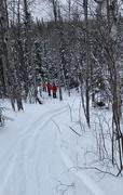 27th Jan 2021 - Snowshoeing Again