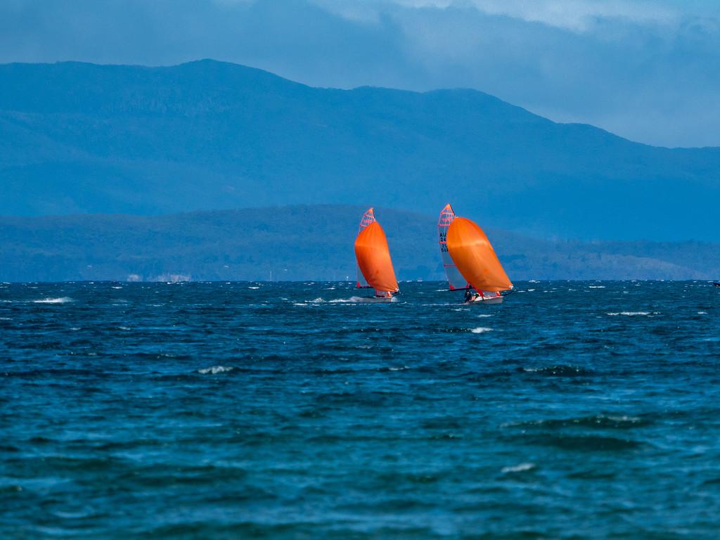 Sailing  by gosia