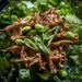 1 Point Salad