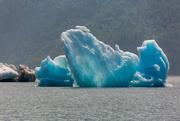 27th Jan 2021 - Blue Glacier Ice