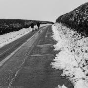 25th Jan 2021 - Lying Snow Still