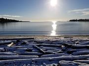 28th Jan 2021 - Winter Beachscape